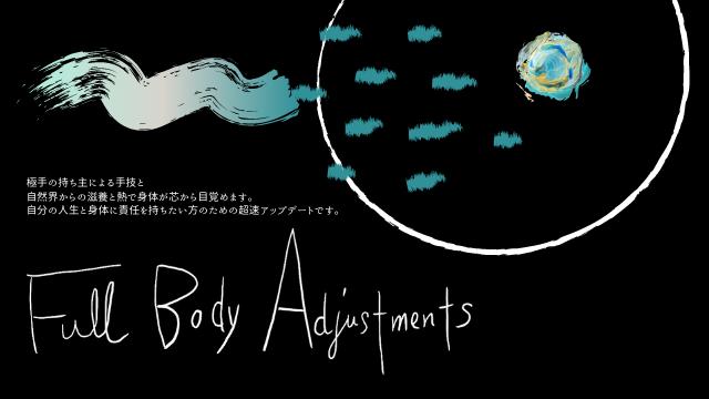 Full Body Adjustments